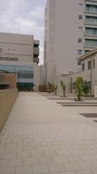 三豊総合病院の側面